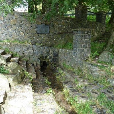 Die Quelle der Fulda