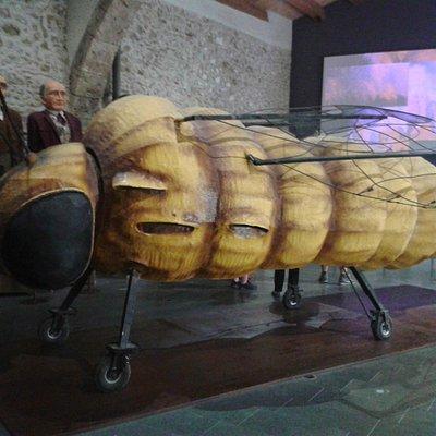Filoxera gigante