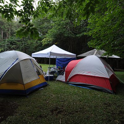 Three tent camp sites available