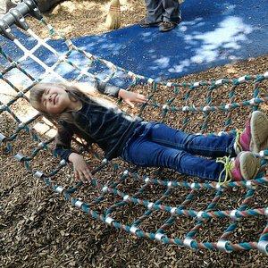 hammock swing thing