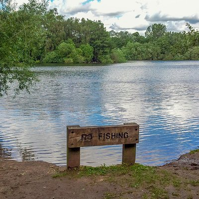 No Fishing, OK?