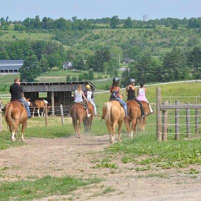 Trail Riding at Maple Crescent farm