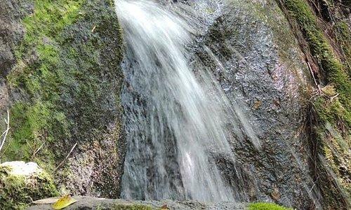 Cachoeira na propriedade.