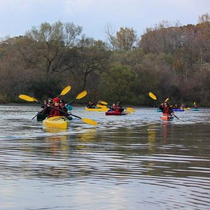 Fall Colours Kayaking & Canoeing Right Here in Toronto!
