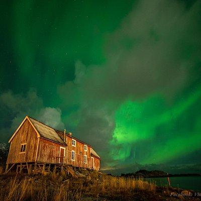 Northern Light Hunt Lofoten. Photo by Vidar Lysvold