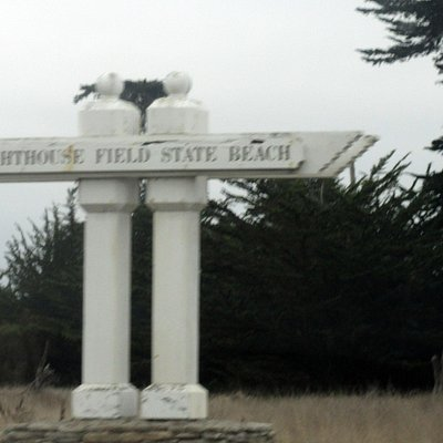 Lighthouse Field State Beach, Santa Cruz, Ca
