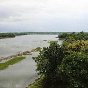 Gorewada Biodiversity Park