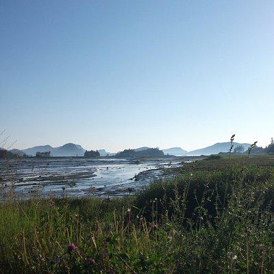 Paysage de la Pointe-aux-Anglais