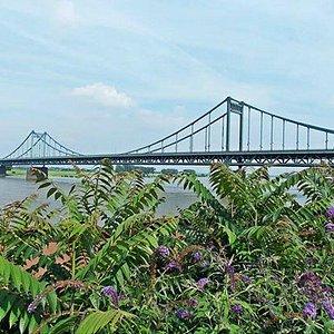 Sommer an der Rheinbrücke
