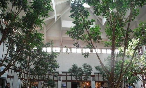 Museum Lobby