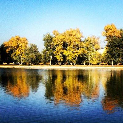 Парк и пруды