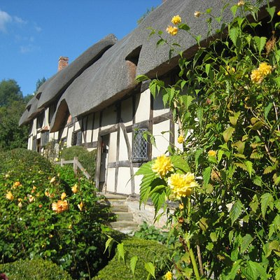 Cottage and garden