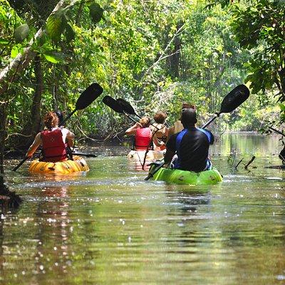 Kayaking at Punta Izopo