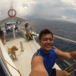 Dolphin watching + Sandbar Adventure