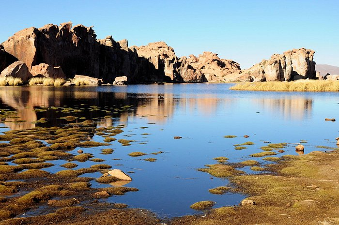 Laguna Negra, Potosi - Bolívia.