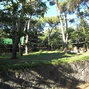 Parco avventura ragazzi adiacente la casa forestale
