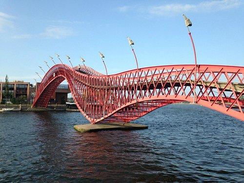 Мост Питон
