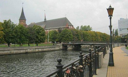 Медовый мост 1