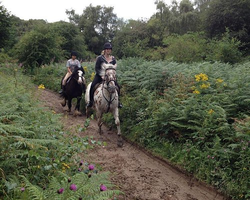 Riding on Llynclys Common