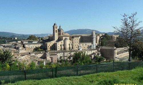 Panoramica Urbino storica