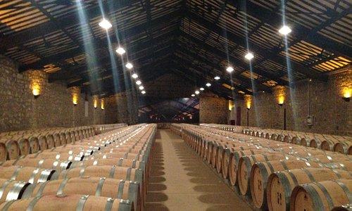 Barrel storage room designed by Gustav Eiffel (of Eiffel tower fame)