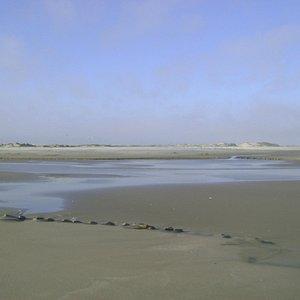 A praia e a natureza...