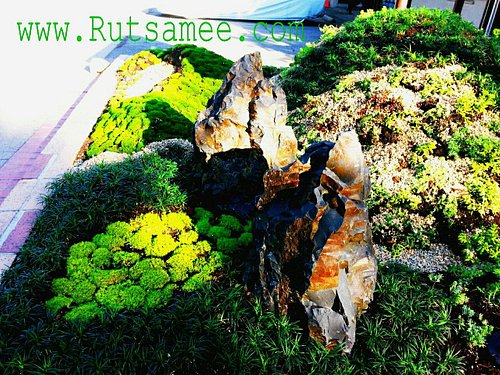 Japanese garden on Lincoln Ave. & Laurel Pl. By www.ReillyDesigns.com At Rutsamee Thai Spa BodyW