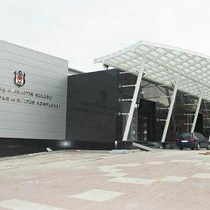 Beşiktaş Jimnastik Klübü