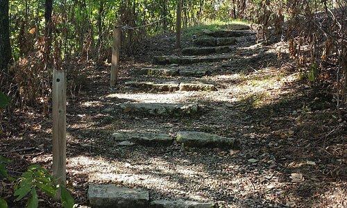 Steps on walking trail