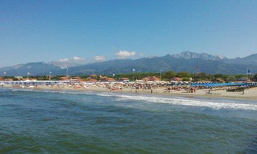 Verso la spiaggia e le Alpi Apuane