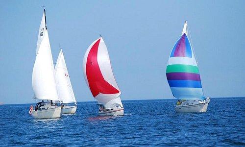 BHYC sailboats racing in the annual Earle W. Forshner regatta on Tatamagouche Bay