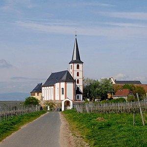 Hochheimer Pfarrkirche St. Peter und Paul