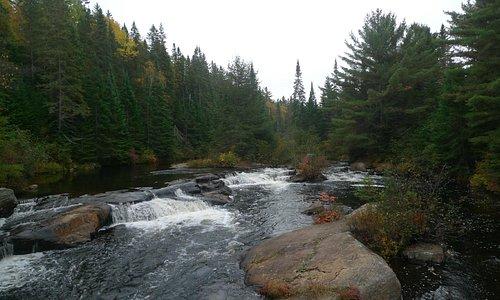 The Scenic Waterfalll