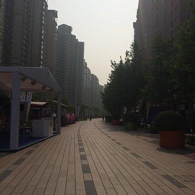 整備された遊歩道