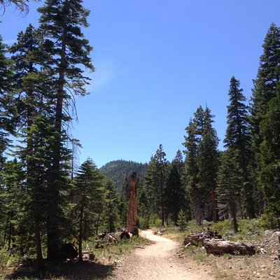 The 1st 1.5mi is an EASY, wide trail.