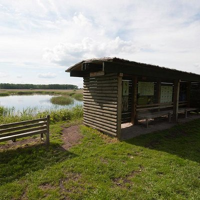 Viewpoint shelter at New Fen North