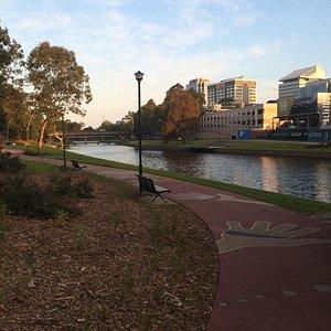Parramatta Park near the river
