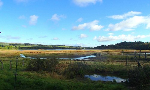 Lovely view of the Aird Meadow from our visitor centre