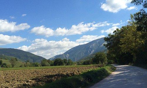 On the road to La Tavola Marche