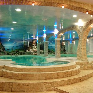 Великолепный бассейн 14м х 4.5м с джакузи