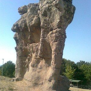 L'Elefante di Campana (Foto da cellulare).