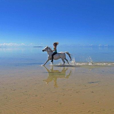 Riding with Mozambique Horse Safari