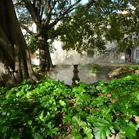 El vapor de agua que brota de la fuente envuelve en misterio el jardín y el palacio Pombal