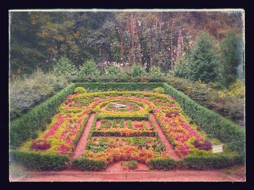 Цветочный календарь в сентябре