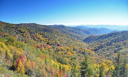 Fall Colors in the Great Smoky Mountains NC