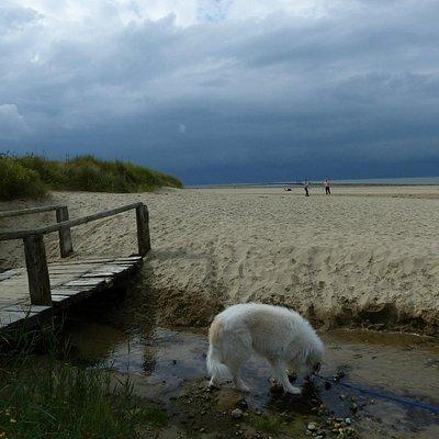 Via een klein bruggetje kom je op het strand