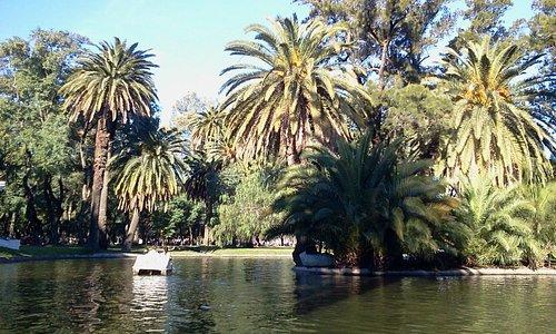 Fotografía tomada en el Parque Garay - Cristian1604