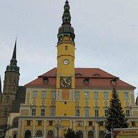 Общий вид ратуши (ёлка после рождественских празднеств)