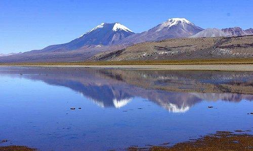 Volcans Parinacota (6350m) et Pomerape (6100m)
