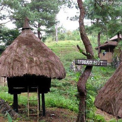 Huts and shacks and cabins